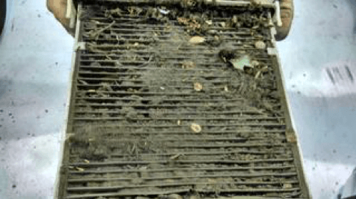 What can a Cabin Filter do for you?