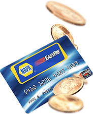 Napa easy pay card